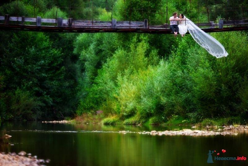 Над рекой - фото 339890 Фотограф Николай Хорьков