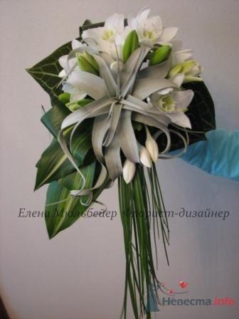 Белоснежные эухарисы и экзотическая тиллансия - фото 28873 Цветочная мастерская Флорины