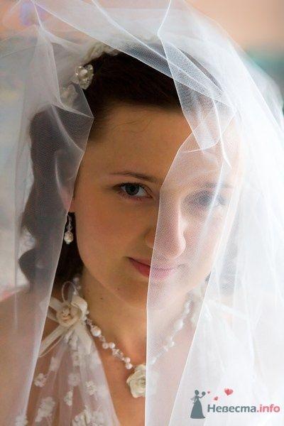 Фото 24936 в коллекции Анюта+Саша - Невеста01