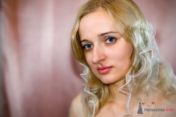 """Фото 44653 в коллекции разное) (для """"пообщаться на форуме"""") - Невеста01"""