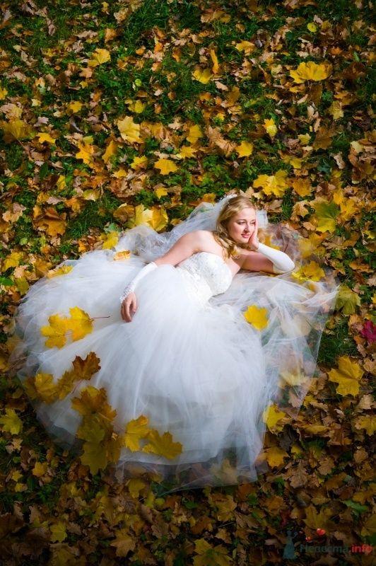 """Фото 65805 в коллекции разное) (для """"пообщаться на форуме"""") - Невеста01"""