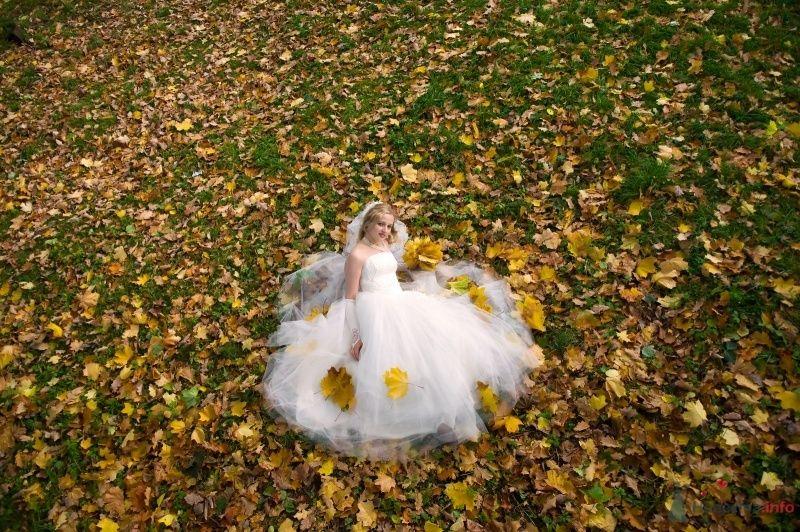 """Фото 65812 в коллекции разное) (для """"пообщаться на форуме"""") - Невеста01"""