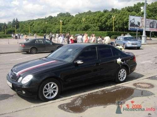 Мерседес 211 - фото 2511 Авто-Премиум - прокат авто