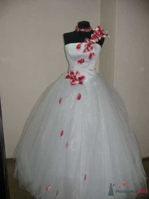 Фото 54091 в коллекции Платье, которые нравяться - Wamira