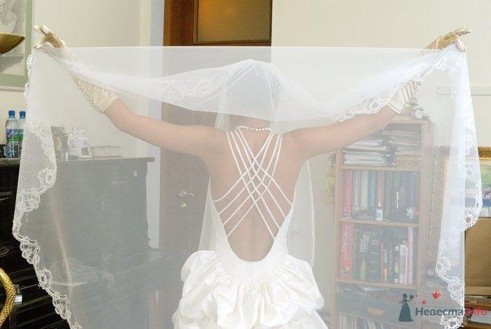 Фото 54247 в коллекции Платье, которые нравяться - Wamira