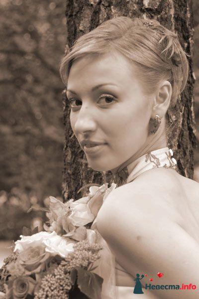 Фото 95497 в коллекции Свадебные прически (фотографии сняты не мной)