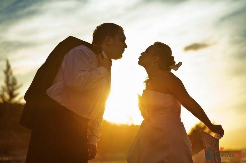 Жених и невеста стоят в поле на фоне заката солнца - фото 74075 Romanetes