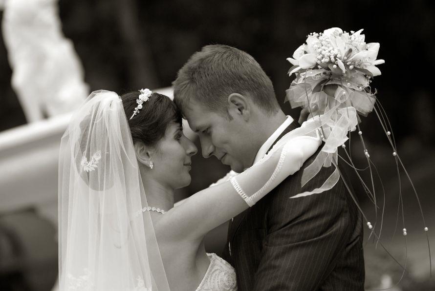 фотограф гребёнкин на свадьбу в краснодаре горизонтальную скамью