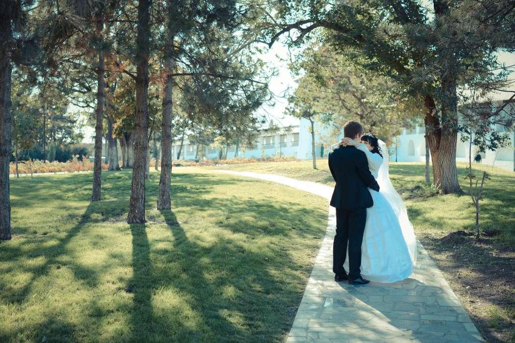 Фото 7704880 в коллекции Wedding - Фотограф Галина Кострыкина