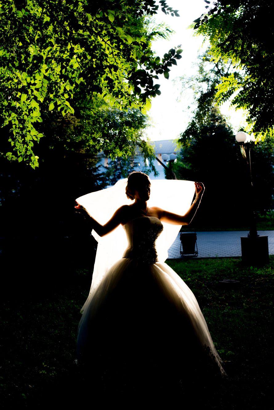 Фото 8806596 в коллекции Портфолио - Фотограф Галина Кострыкина