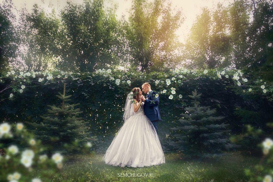Александра и Виктор - фото 13495258 Фотограф Кирилл Семчугов