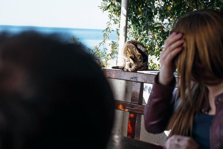 Фото 12797986 в коллекции Прогулки по Абхазии. Гагра - Фотограф Дмитрий Макарченко