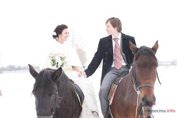 Жених и невеста, держась за руки, едут верхом на лошадях - фото 59855 Marysichka