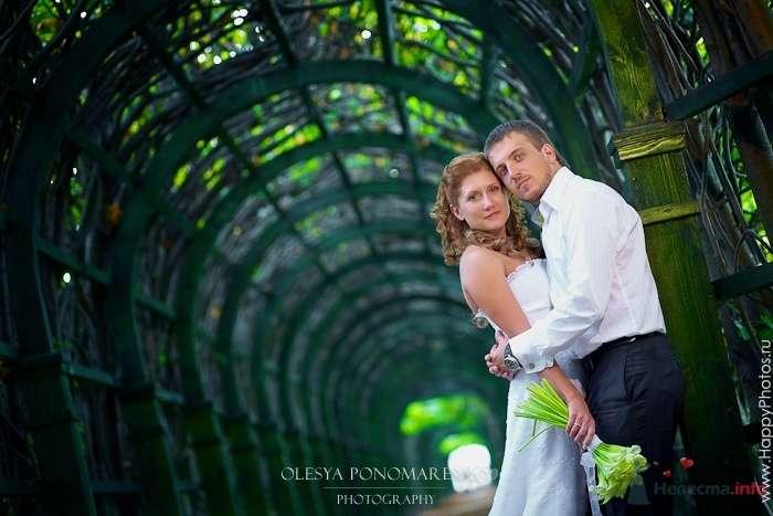Фото 51202 в коллекции 12.09.09 - Невеста01
