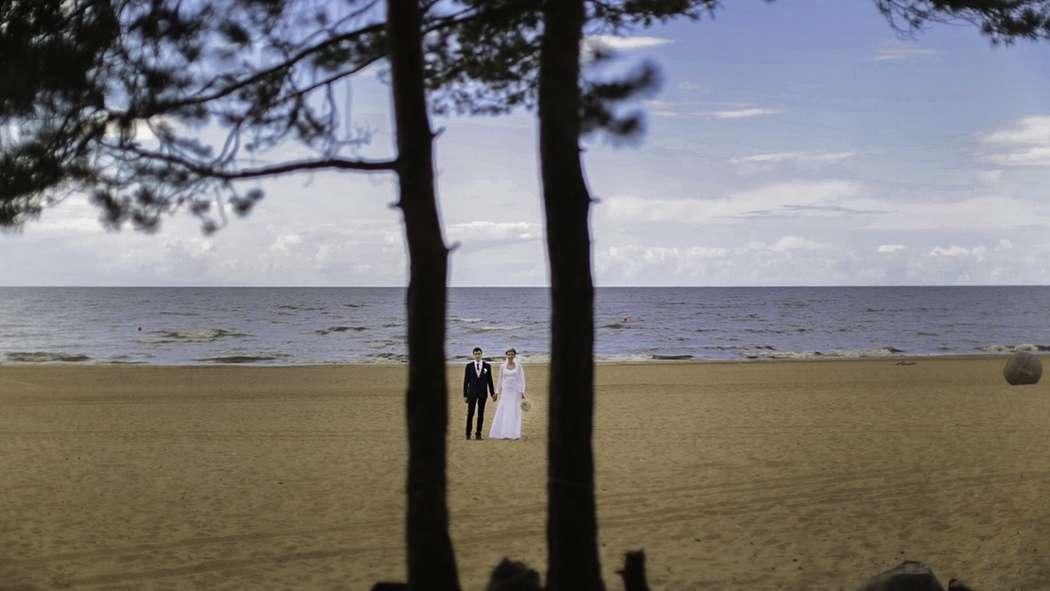 Фото 7287206 в коллекции Weddings - Imaginestudio - видеосъёмка