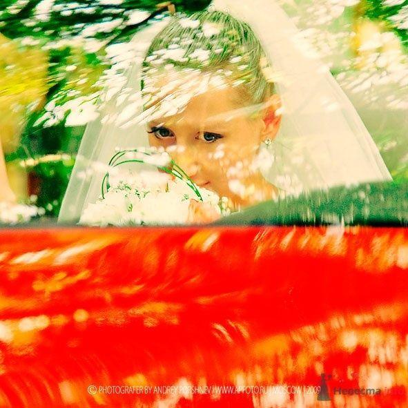 Фото 25992 в коллекции Фотографии со свадеб - Фотограф Андрей Поршнев