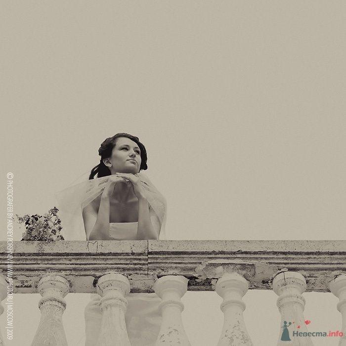 Фото 38588 в коллекции Фотографии со свадеб - Фотограф Андрей Поршнев