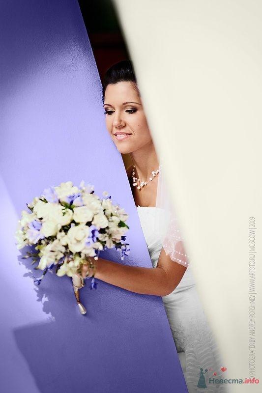 Фото 46120 в коллекции Фотографии со свадеб - Фотограф Андрей Поршнев