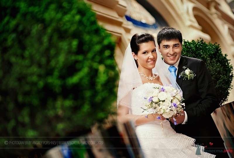 Фото 52046 в коллекции Фотографии со свадеб - Фотограф Андрей Поршнев