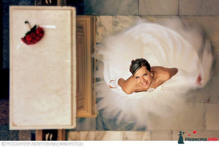 свадебный фотограф андрей поршнев - фото 112446 Фотограф Андрей Поршнев