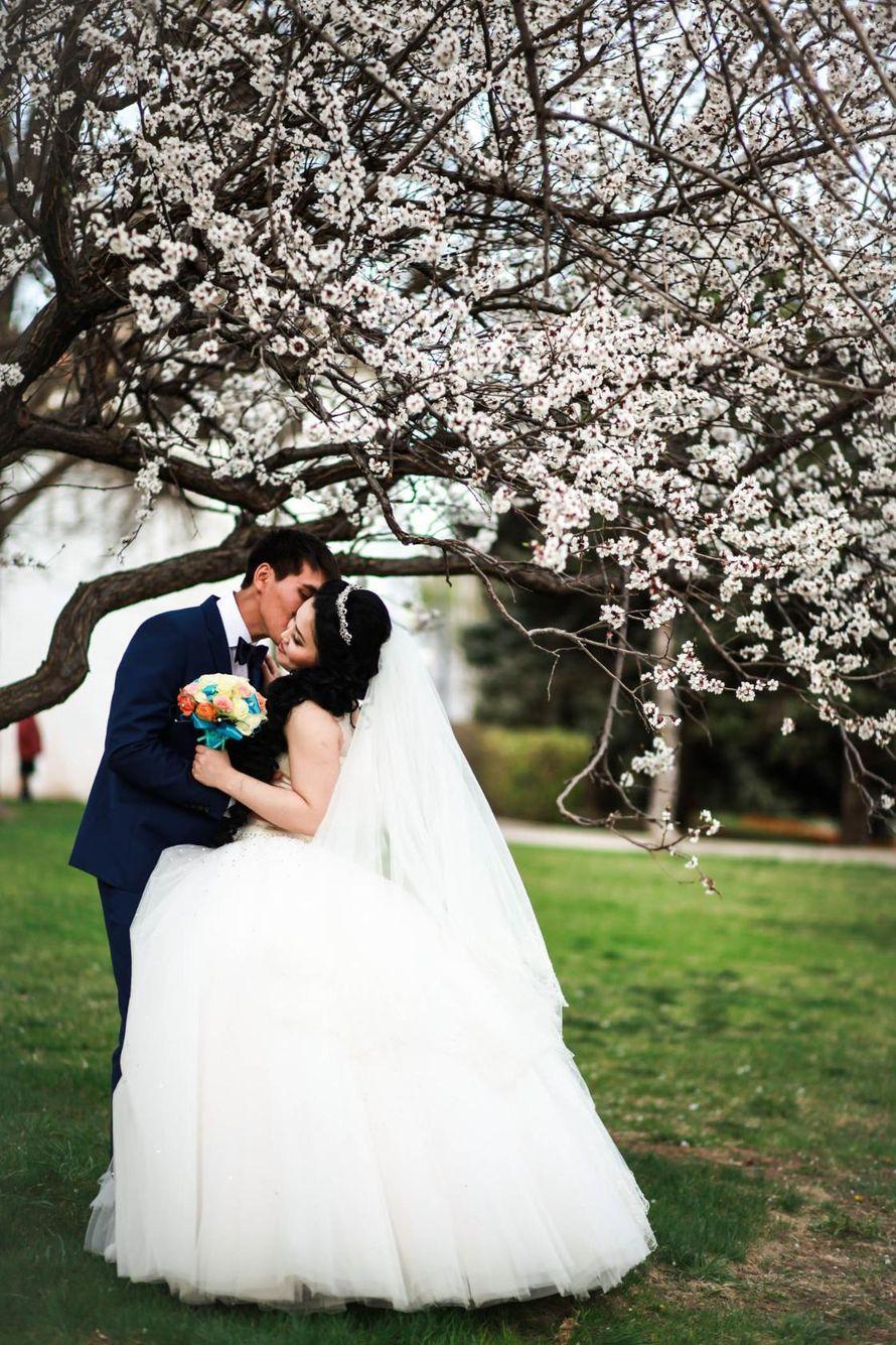 Фото 9504696 в коллекции свадьбы ) - Фотограф Наталья Фирсова