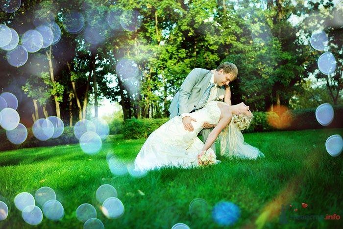 Жених держит на руках невесту посреди парка - фото 48689 KyKyWkA