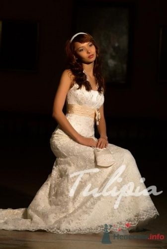 Фото 22810 в коллекции платья - КОШКАМА
