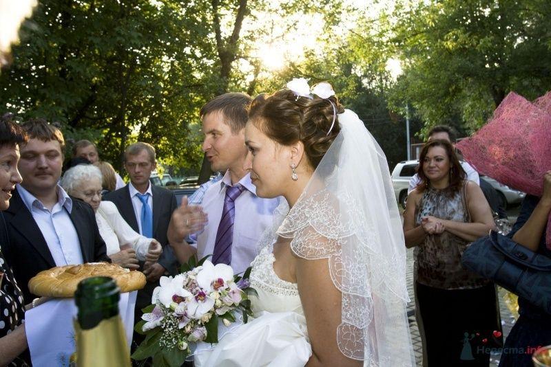 Фото 46409 в коллекции Моя свадьба - Мимоза