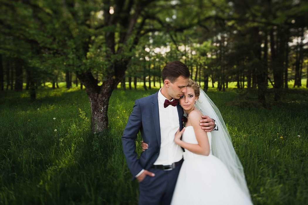 Фото 6082435 в коллекции Свадьбы - Фотограф Александр Лемар