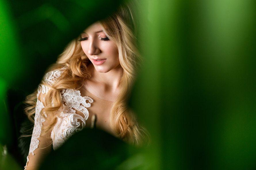 Фото 13365572 в коллекции Портфолио - Фотограф Екатерина Лежнёва