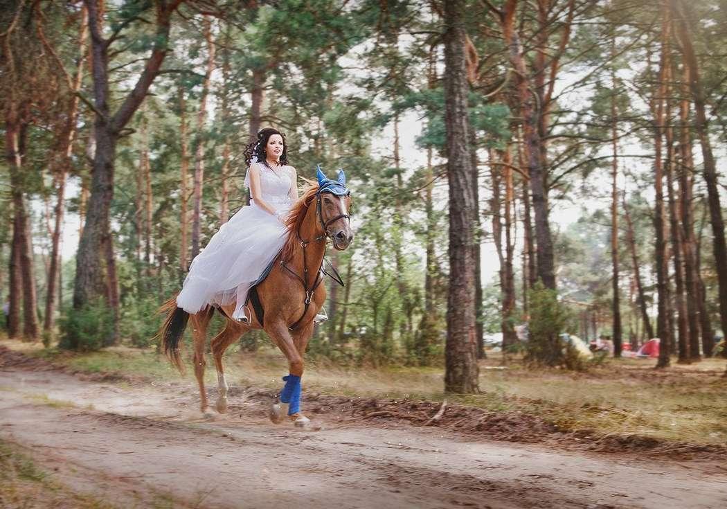 Фото 4271921 в коллекции Свадебная съемка - Фотограф Надежда Горох