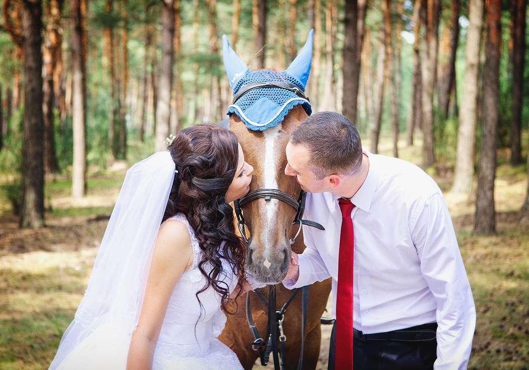 Фото 4271925 в коллекции Свадебная съемка - Фотограф Надежда Горох