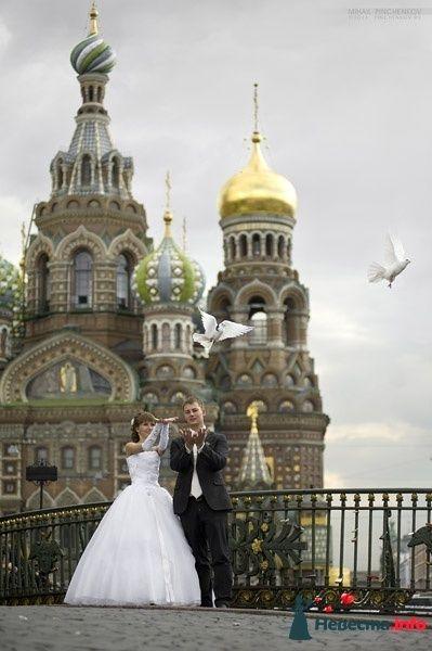 Фото 327227 в коллекции Свадьба - Михаил Пинченков - Профессиональный фотограф