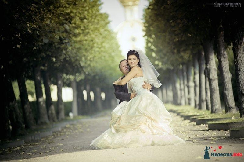Фото 327243 в коллекции Свадьба - Михаил Пинченков - Профессиональный фотограф
