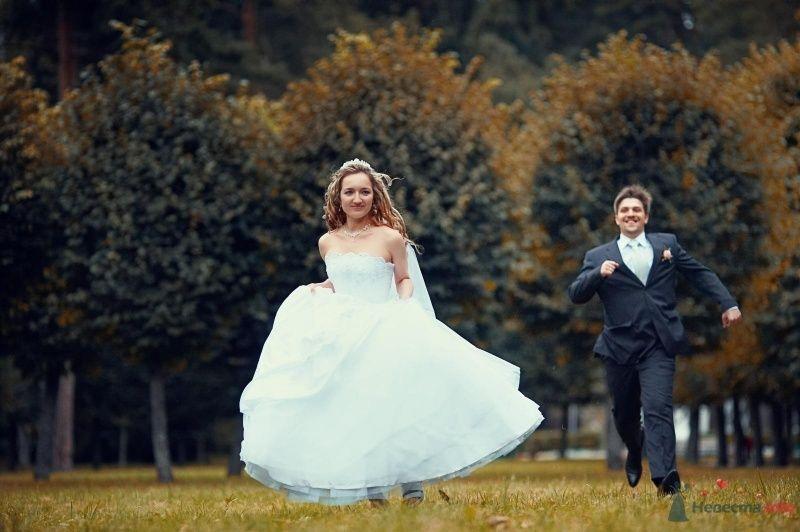 Фото 63008 в коллекции Наша самая счастливая свадьба )) - Anastasiya