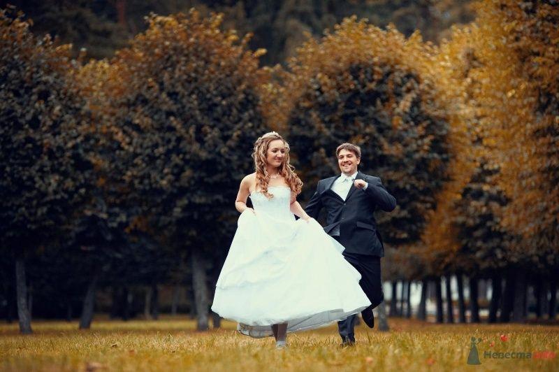 Фото 63009 в коллекции Наша самая счастливая свадьба )) - Anastasiya