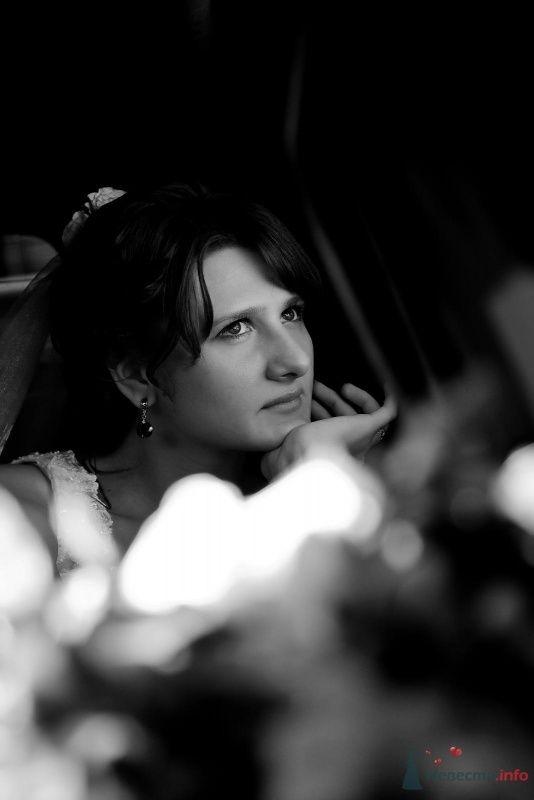 Фото 47678 в коллекции 10 сентября 2009г - sofiya