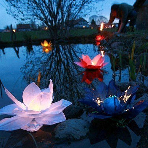 Лотосы-фонарики для воды и интерьера