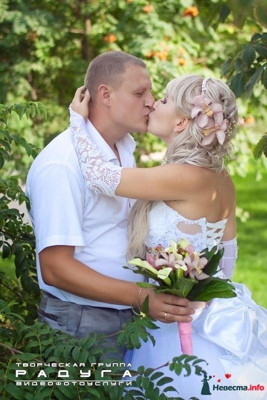 Фото 313899 в коллекции Свадебное фото (подборка) - Фотограф Виталий Румянцев