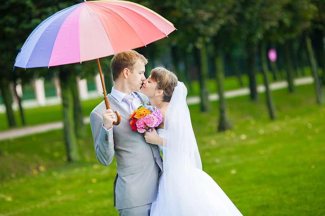 зонт для свадебной фотосессии начинается