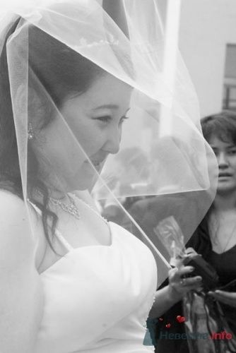 Фото 23031 в коллекции Свадьбы