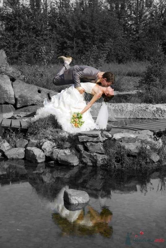 Фото 39286 в коллекции Наша свадьба - Krolia