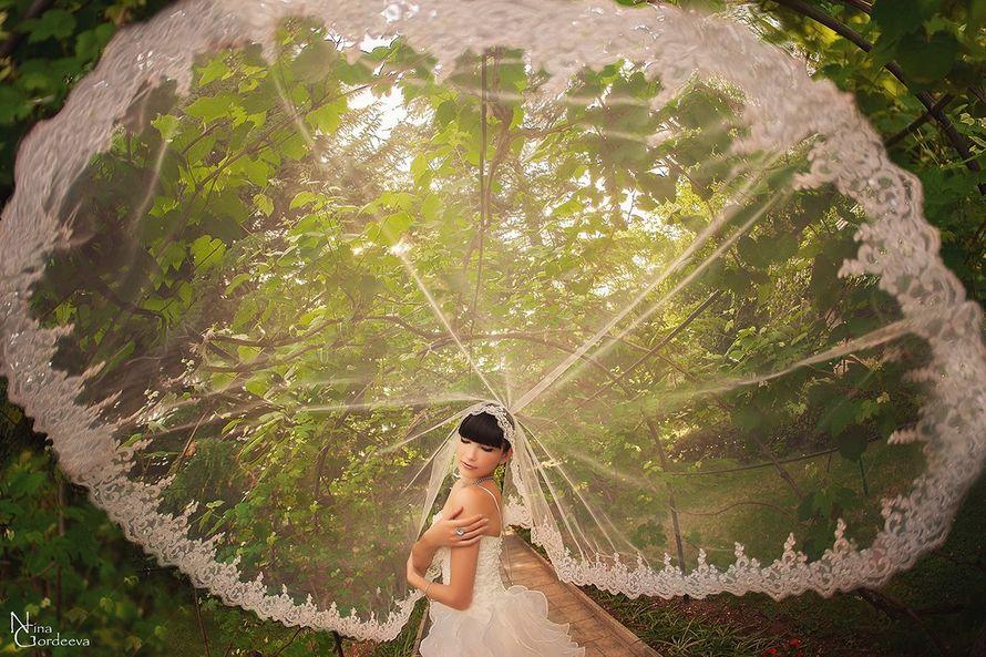 Фото 3893963 в коллекции Свадебное - Фотограф Нина Гордеева