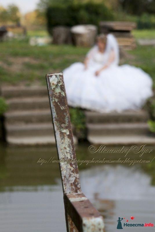 Фото 329877 в коллекции Свадебная фотосъемка -Trash на Кубани - Alexandrof-wedding photographer