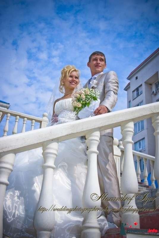 Свадьба Лизы и Сергея - фото 332788 Alexandrof-wedding photographer