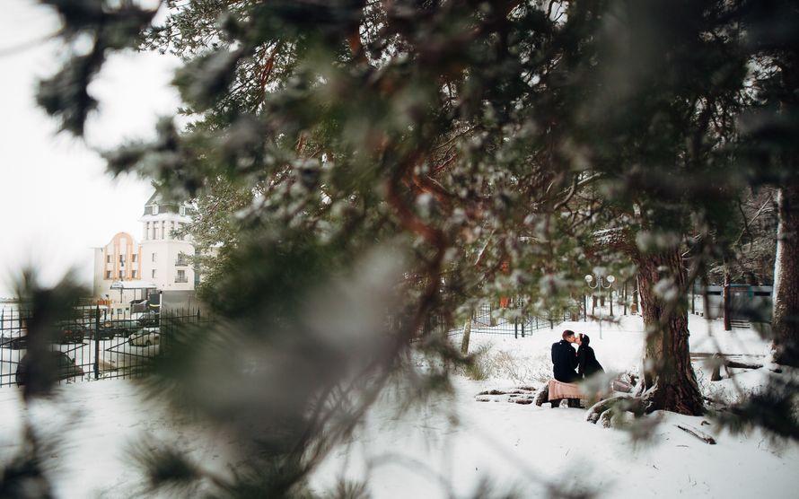 Фото 13980148 в коллекции Портфолио - Фотограф Вадим Вереницын