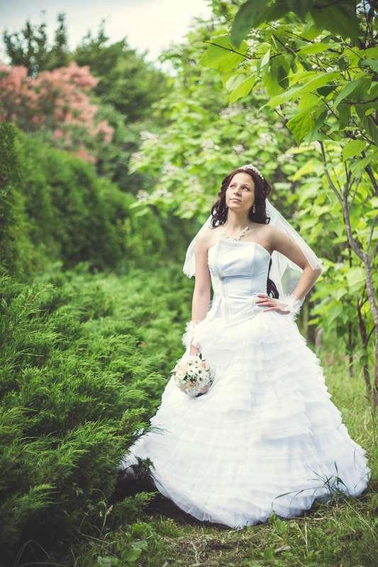 Фото 3906101 в коллекции Свадьба Даши и Кости - Фотограф НН Алексей Фролов