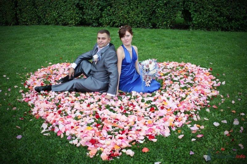Фото 58431 в коллекции Свадьба - Николай+Елена