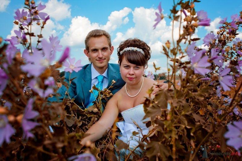 Жених и невеста, прислонившись друг к другу, стоят на фоне деревьев - фото 31385 Свадебный фотограф Пантелеев Александр