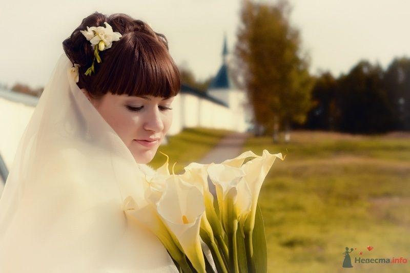 no name - фото 43407 Свадебный фотограф Пантелеев Александр